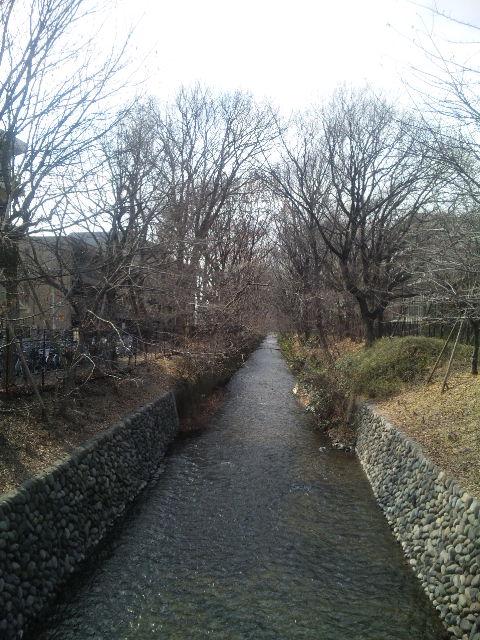 玉川上水からスカイツリーへ
