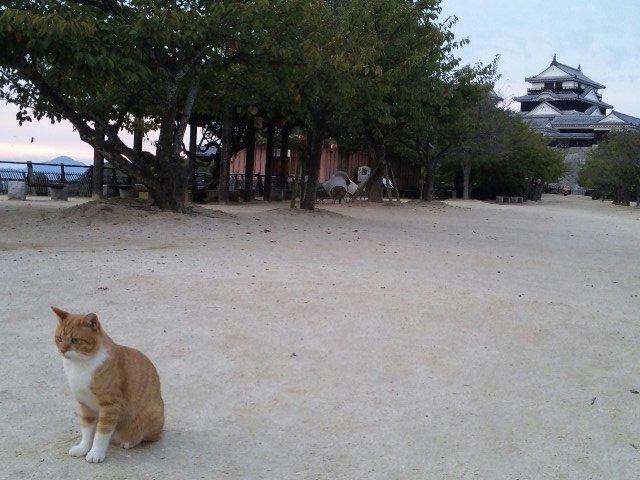 松山城太鼓櫓にて
