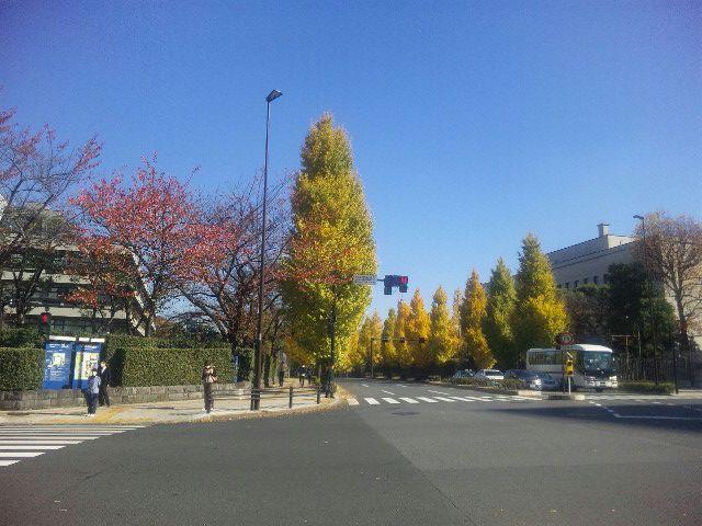 鶴見→横浜→大井町→有楽町→永田町
